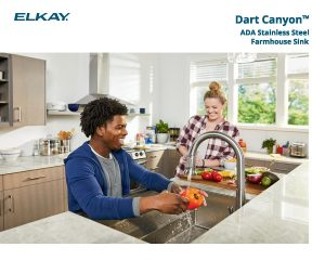 Elkay Dart Canyon Farmhouse Sink